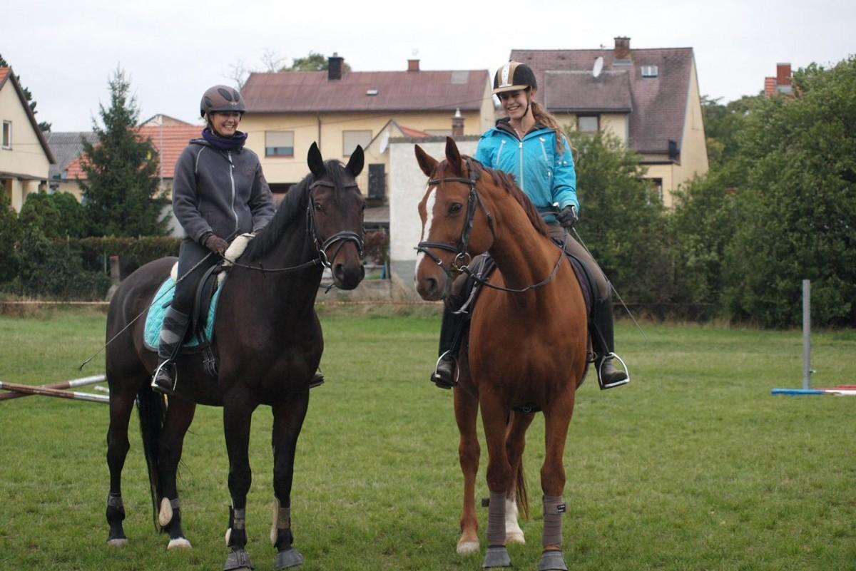 Training für Reiter