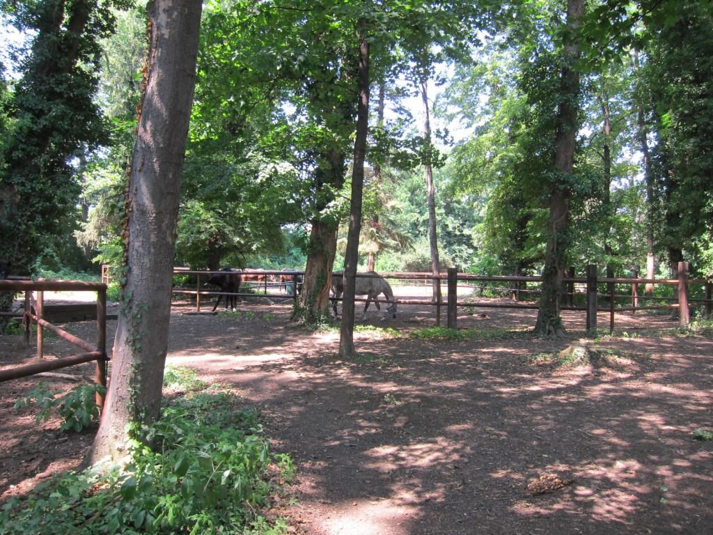 koppelpark