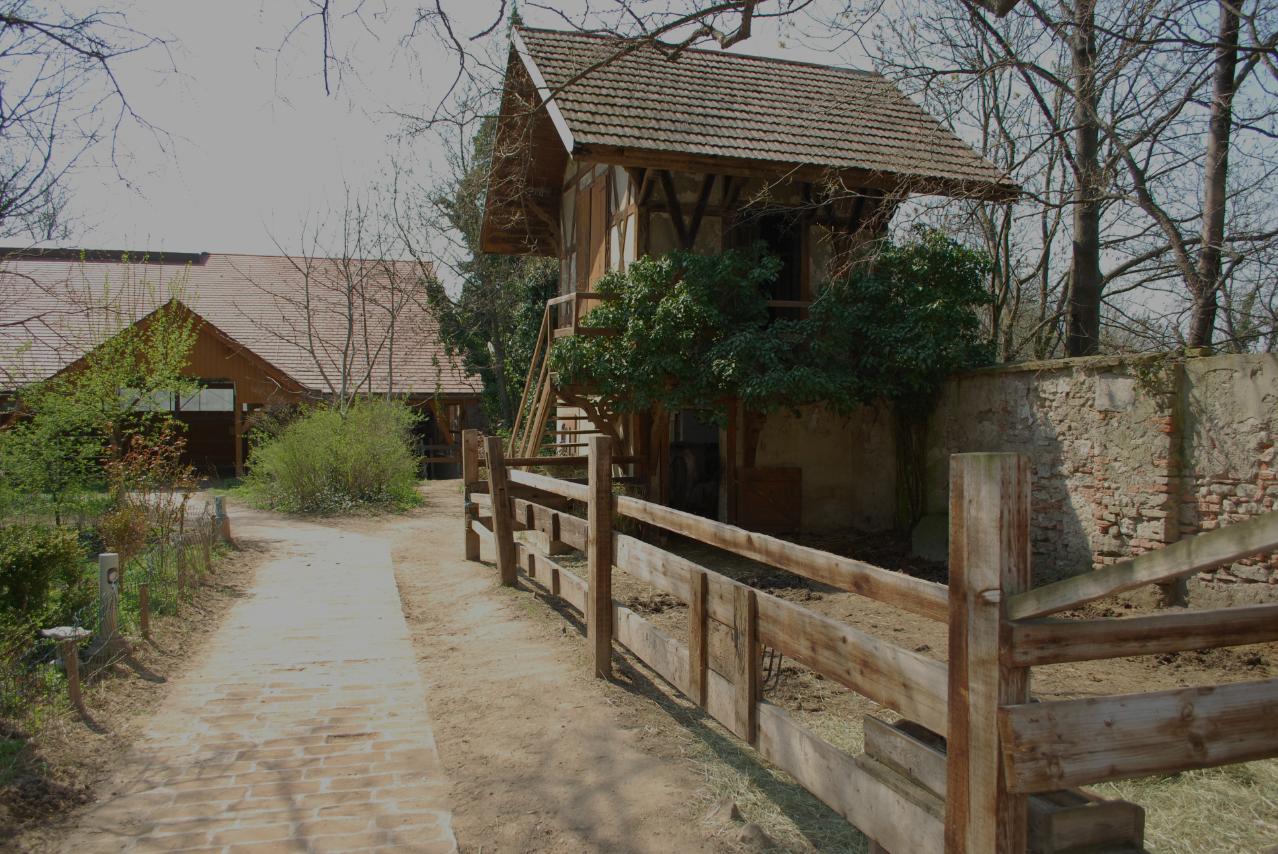 Alte Mühle – Die Anlage